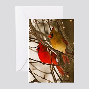 cardinals2poster Greeting Cards