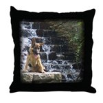 GSD - Fountain Throw Pillow