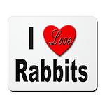 I Love Rabbits for Rabbit Lovers Mousepad