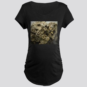 cluster of fossil shells Maternity T-Shirt