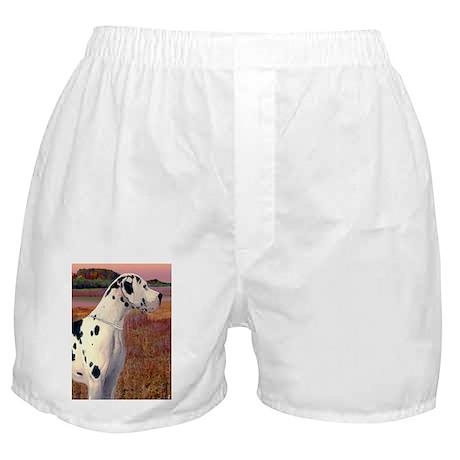 Great Dane Harlequin Art Scene Boxer Shorts