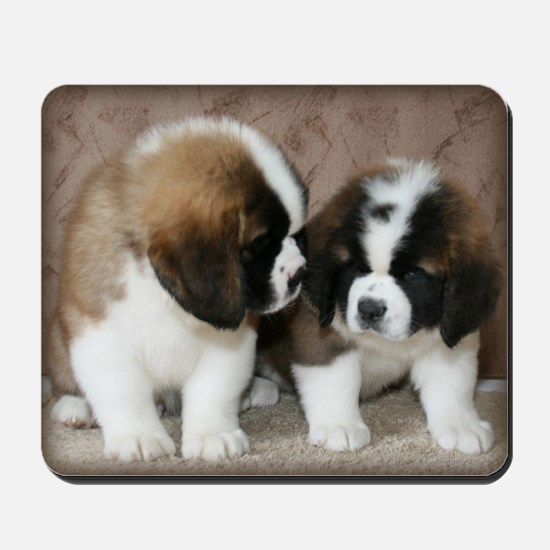 St. Bernard puppies2 Mousepad
