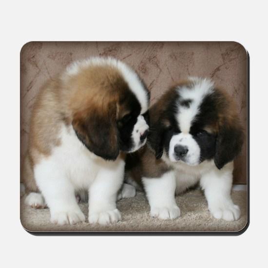 St. Bernard puppies2 Mousepad