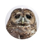 Northern Spotted Owl Ornament (Round)