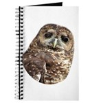 Northern Spotted Owl Journal