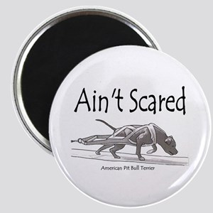 Ain't Scared Magnet