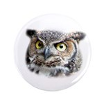 Great Horned Owl Face 3.5