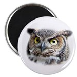 Great Horned Owl Face Magnet