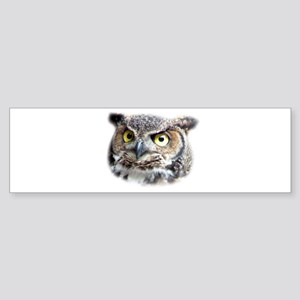 Great Horned Owl Face Bumper Sticker