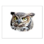 Great Horned Owl Face Small Poster