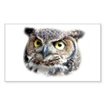 Great Horned Owl Face Rectangle Sticker