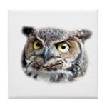 Great Horned Owl Face Tile Coaster
