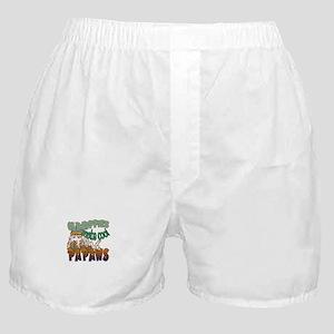 OLD HIPPIES MAKE COOL PAPAWS Boxer Shorts
