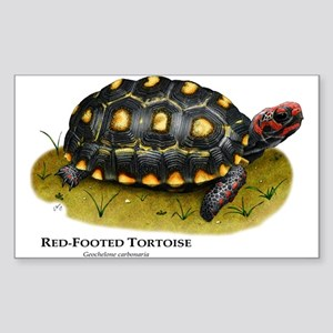 Red-Footed Tortoise Rectangle Sticker