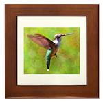 Hummingbird Framed Tile