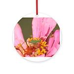 Katydid in Flower Ornament (Round)