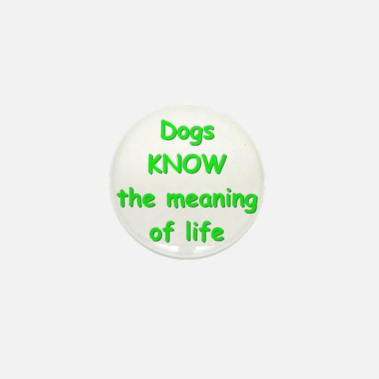 Dogs Know Mini Button