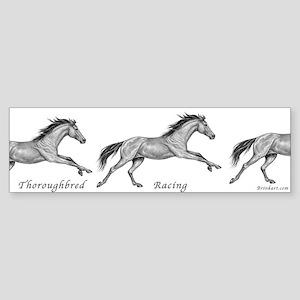 Thoroughbred Horse Racing ~ Bumper Sticker