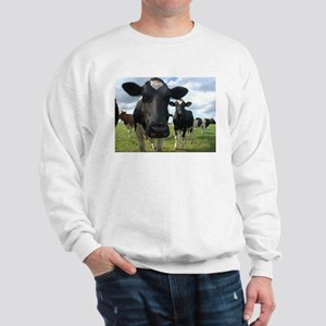 Heres Lookin At You Babe! Sweatshirt