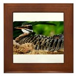 Sunbittern Framed Tile