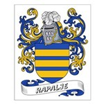 Rapalje Coat of Arms Small Poster