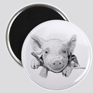 Baby Pig Magnet