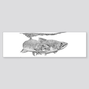Brook Trout Bumper Sticker