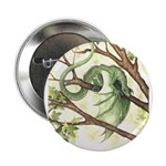 Green Fairy Dragon Button