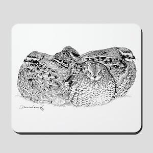 Bob White Quail Mousepad