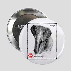 """""""71"""" African Elephant, PAWSWeb.org 2.25"""" Button"""