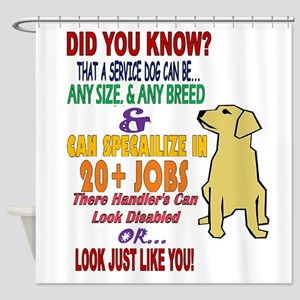 did you know service dog education Shower Curtain