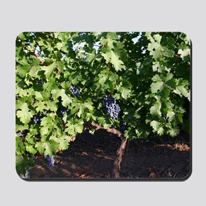 Grapes on Vine in Napa Valley Mousepad