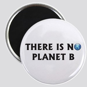 There Is No Planet B Magnet