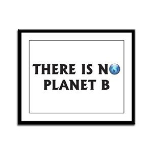 There Is No Planet B Framed Panel Print