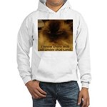 Prior Knowledge Hooded Sweatshirt
