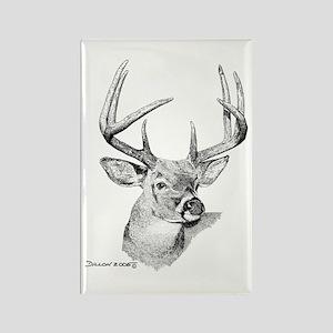 Whitetail Deer Rectangle Magnet