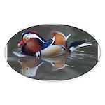 Mandarin Duck Oval Sticker