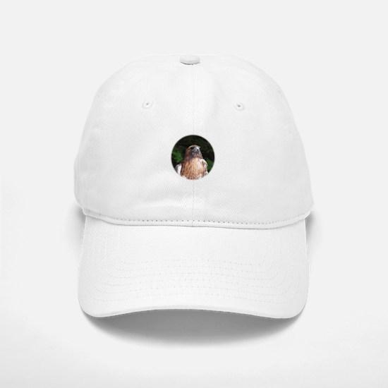 Redtailed Hawk Baseball Baseball Cap
