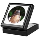 Redtailed Hawk Keepsake Box