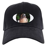 Redtailed Hawk Black Cap