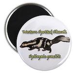 Western Spotted Skunk Magnet