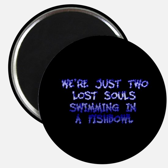 Two Lost Souls Swimming in a Magnet