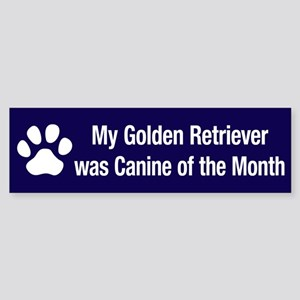 Golden Retriever of the Month Bumper Sticker