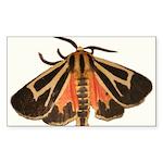 Tiger Moth Rectangle Sticker