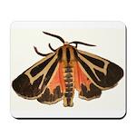 Tiger Moth Mousepad
