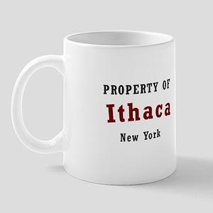Made in Ithaca New York T-shi Mug