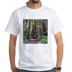Redwood Trail White T-Shirt