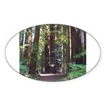 Redwood Trail Oval Sticker