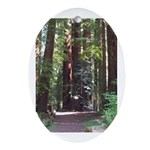 Redwood Trail Oval Ornament