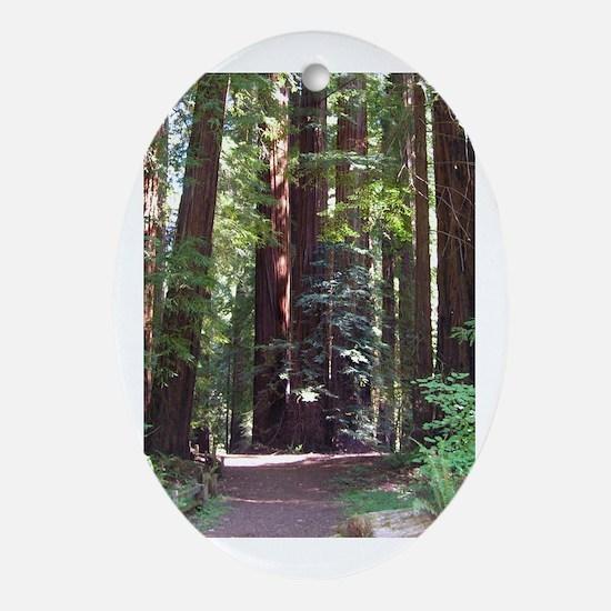Redwood Trail Oval Ornament